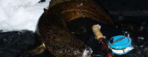 Lake på drygt 3 kilo tagen på pimpel