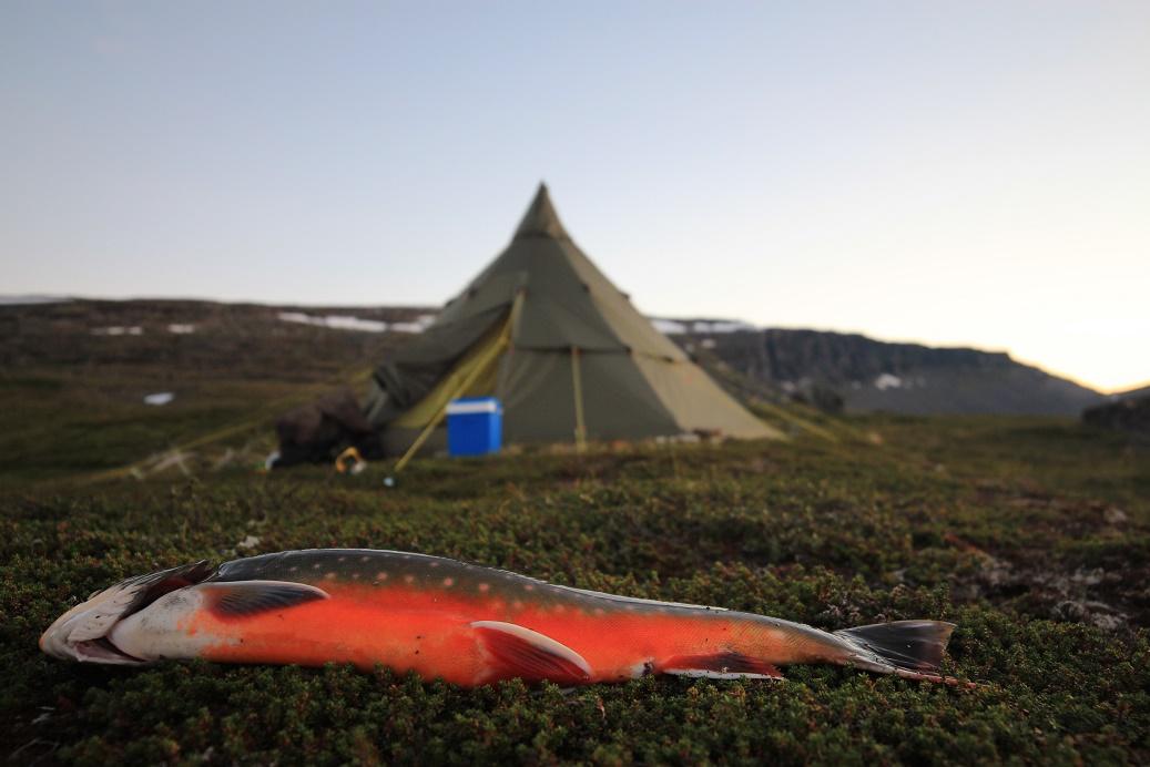 Tältkåta & Fjällfiske
